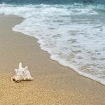 暑中見舞い 書き方 小学生