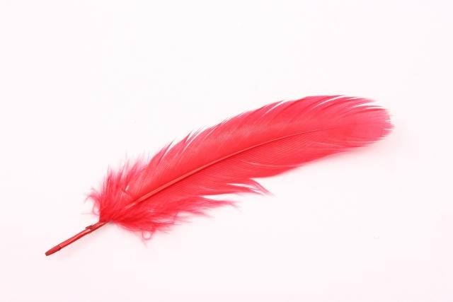 赤い羽根募金とは