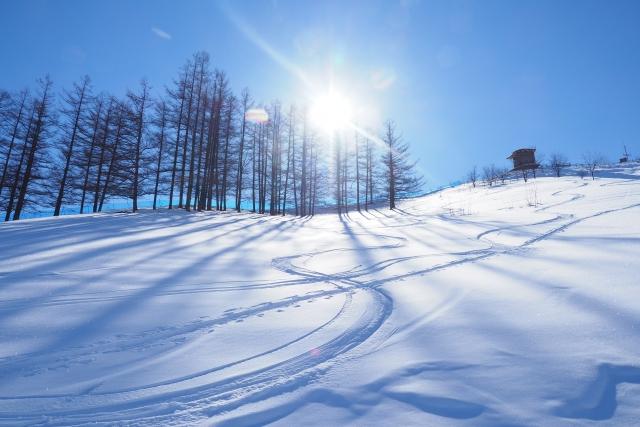 スキー場 料金 仕組み